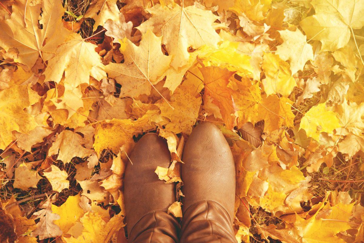 Toamna pantofii de piele naturala sunt elementul cheie in garderoba ta